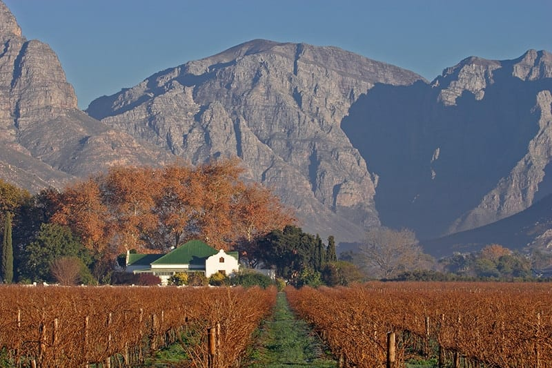 Sth Africa - Winelands